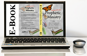 Practical Prophetic Ministry (E-Book)